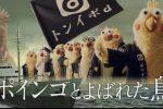 【ポインコ動画】ポインコとよばれた鳥!映画「海賊とよばれた男」とのコラボCM公開!